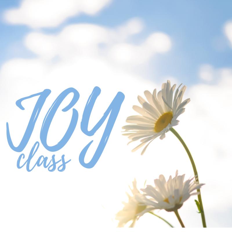 J.O.Y Class (Seniors)