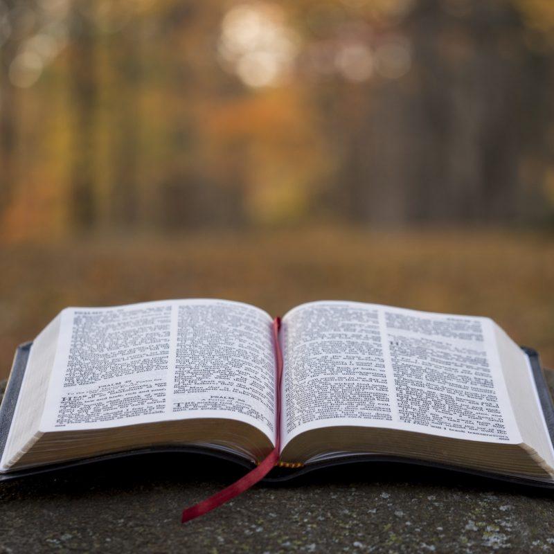 To encourage discipleship