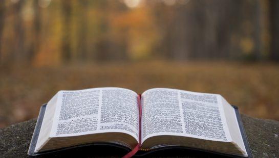 Watch Sermons